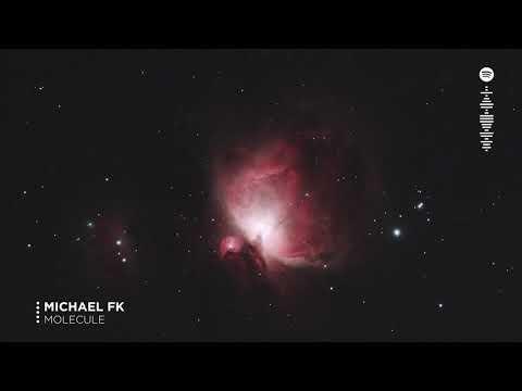 Michael FK - Molecule