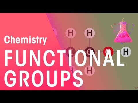 The Functional Group Concept Explained | Organic Chemistry | FuseSchool