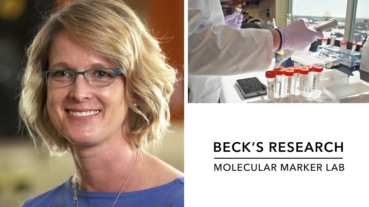 Beck's – Hybrid Corn Breeding – Molecular Marker Lab ...