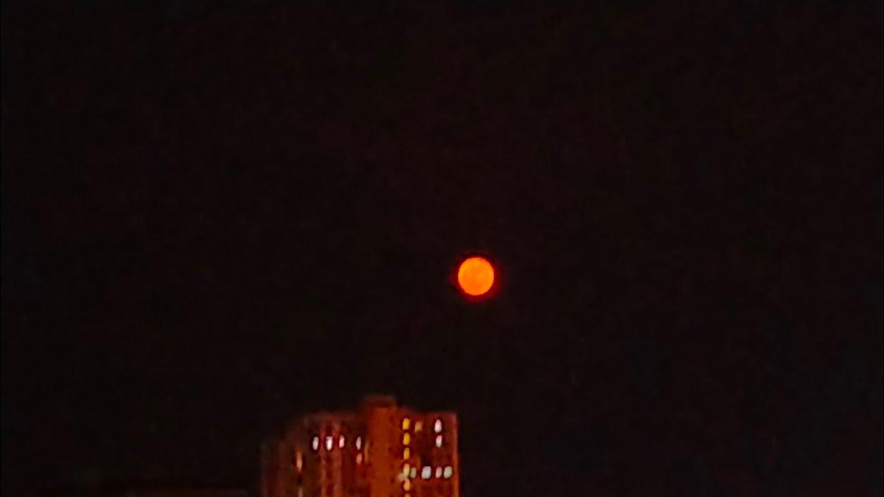 Strawberry 🍓 Moon