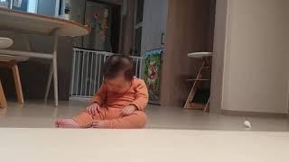 폭풍 기고 응아 20.11.28 토 | 9개월아기 | …