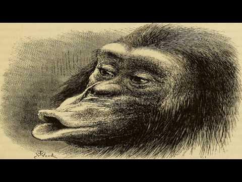 Kallikak Family | Henry H. Goddard | Psychology | Soundbook | English | 2/2