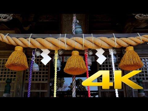 Shirahama Shrine - Shizuoka - 白濱神社 - 4K Ultra HD