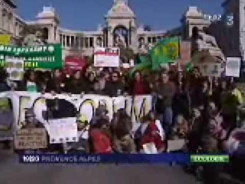 Manifestation contre le projet de parking au Parc Longchamp, à Marseille (France3)
