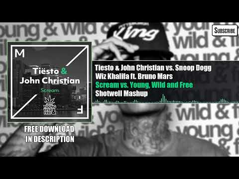 Tiësto & John Christian - Scream Vs. Young, Wild And Free (Shotwell Mashup)