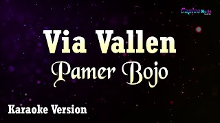 Download lagu Via Vallen - Pamer Bojo (Karaoke Version)