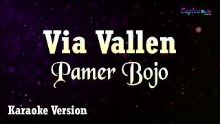 Download Via Vallen - Pamer Bojo (Karaoke Version)