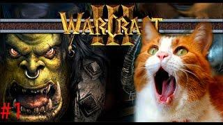 #1 Приколы: политика с озвучкой из игры Warcraft 3