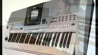 CHRISTIAN BRUHN NESTHÄCKCHEN MELODIE PERFORMED ON YAMAHA PSR S900 BY M.NOTHELLE