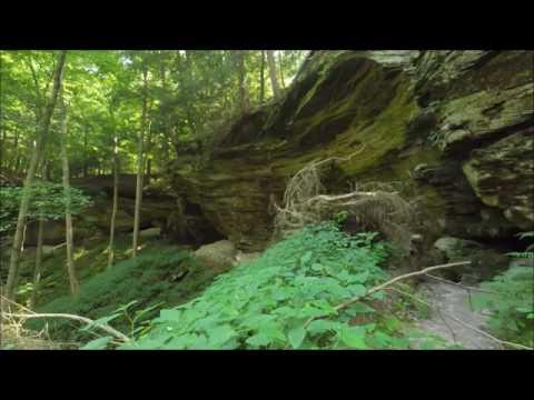deepwoods of indiana asmr