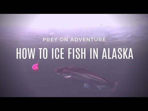ICE FISHING ALASKA - HOW TO CATCH OVER 100 FISH! ICE FISHING SETUP & AWESOME UNDERWATER SHOTS