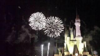 New Years Day 2009-2010 Fireworks at Magic Kingdom-Walt Disney World