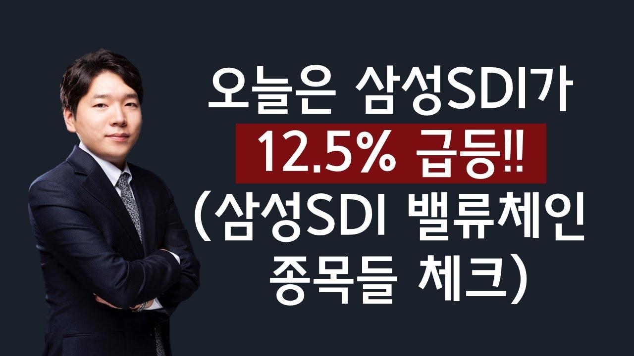 [주식] 200805 오늘은 삼성SDI가 12.5% 급등!! (삼성SDI 밸류체인 종목들 체크)