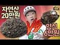 membandingkan rasa abalon Korea