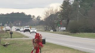 2 teens killed in Harnett County hit-and-run on US 421