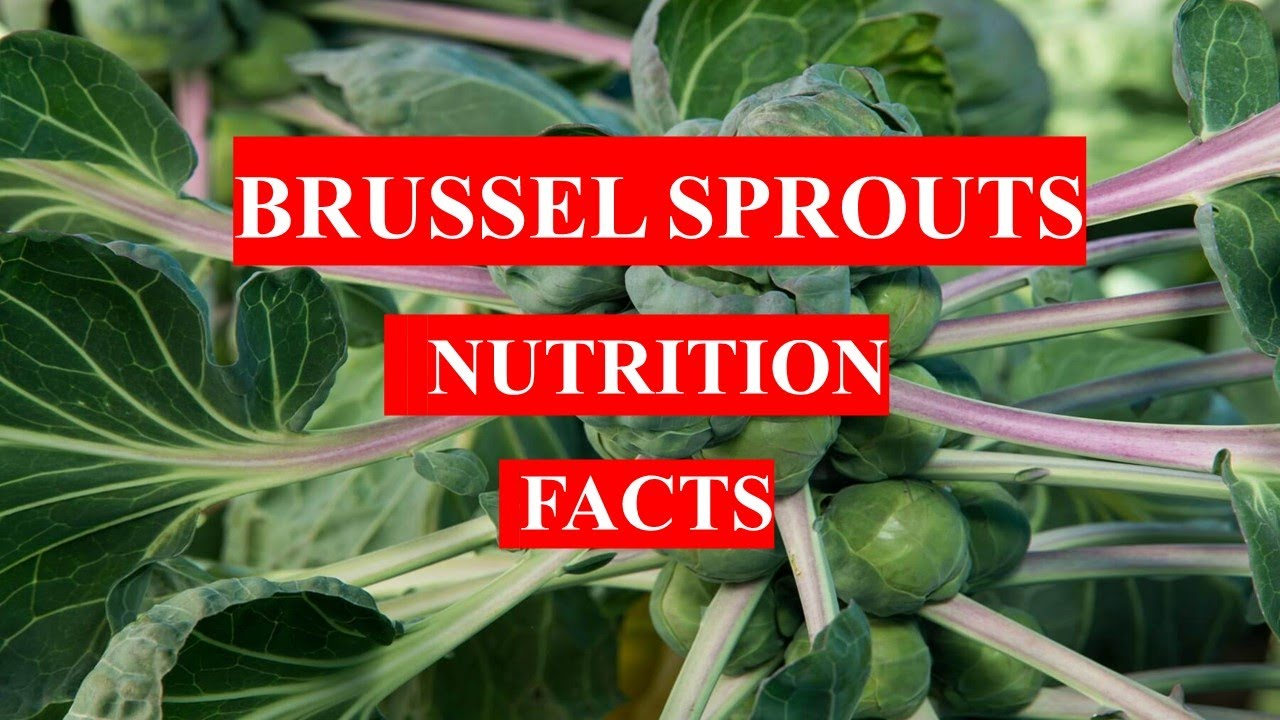 Brussel Sprouts nutrition
