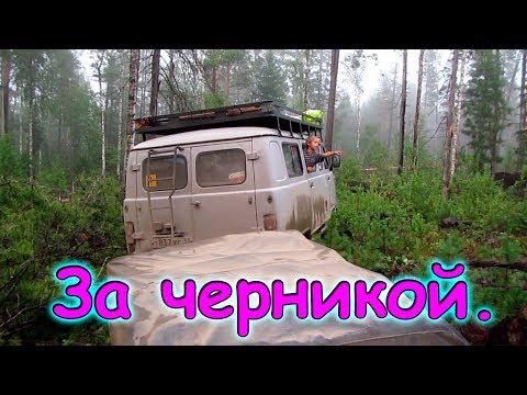 ООО Амб-Трейд, Иркутск (ИНН 3812151880, ОГРН