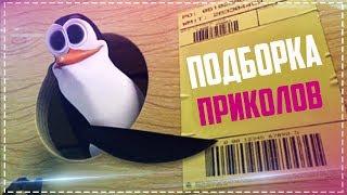 Свежая подборка приколов 2018 / Тест на психику / Засмеялись-проиграли!