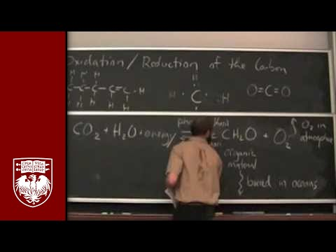 Lecture 16 - The Battery of the Biosphere