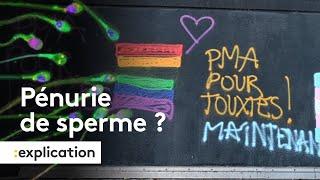 Avec la PMA pour toutes, doit-on craindre une pénurie de spermes ?