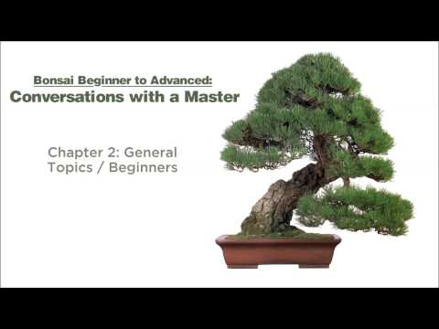 Bonsai Conversations with a Master - Chapters 1 & 2