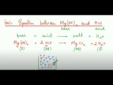 Net Ionic Equation Between Mg(OH)2 And HCl