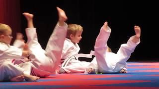 Karate graduation performance