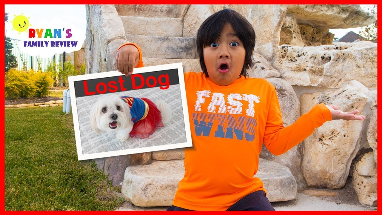 Download Our Dog Ran away on Thanksgiving Day!!!!