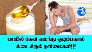 பாலில் தேன் கலந்து குடிப்பதால் கிடைக்கும் நன்மைகள்!!! - Tamil TV