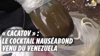 """""""Cacatov"""" : le cocktail nauséabond employé par des Gilets jaunes contre la police"""
