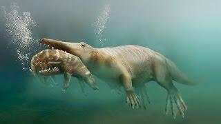 Пути эволюции — Сухопутные киты (Документальные фильмы, передачи HD)