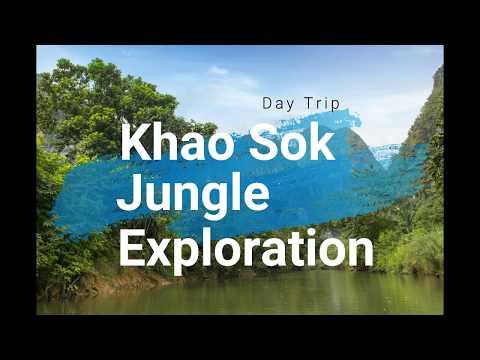 Khao Sok Rainforest - Day Trip