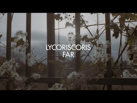 Lycoriscoris - Far