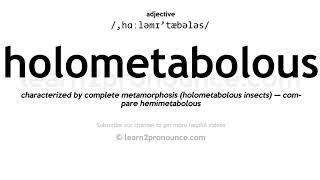 How to pronounce Holometabolous English pronunciation