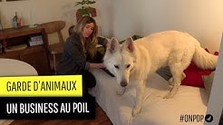 Garde d'animaux : un business au poil