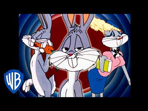 Looney Tunes en Espaol Latino America   Las Mltiples Facetas del Pato Lucas   WB Kids