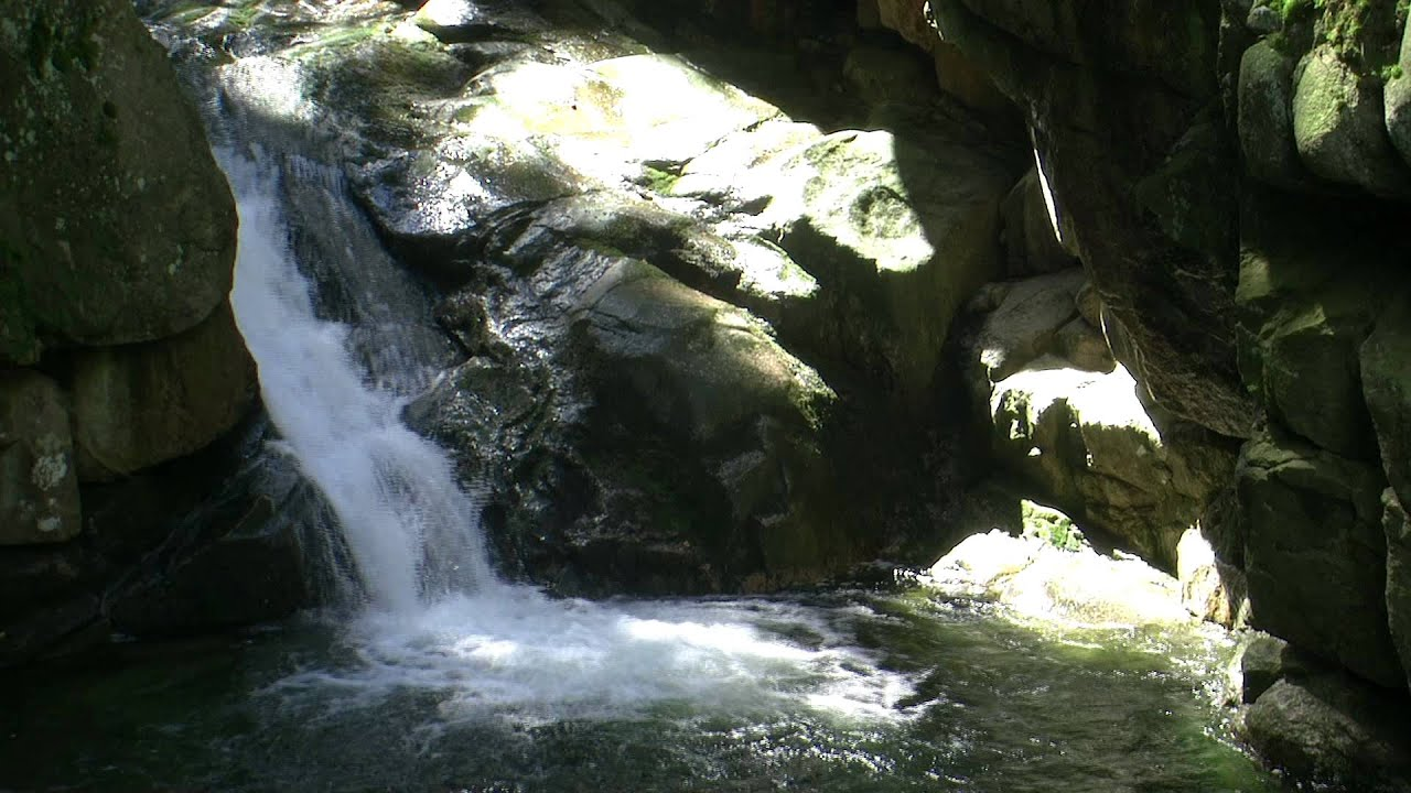 Live wallpaper. Real waterfall 1080p motion loop. - YouTube