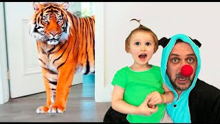 Eva really wants to have pets. Animals in the house | Super Eva