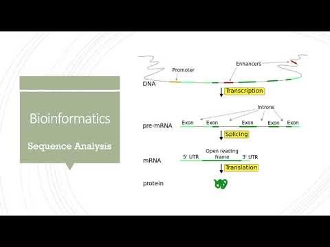Biomedical and Health Informatics