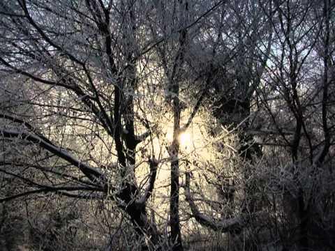 Vangelis-Antarctica-Song Of White