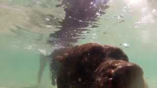 GoPro: Awesome Dog Fishing for Rocks Underwater