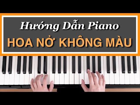 [Hướng Dẫn Piano] HOA NỞ KHÔNG MÀU | Hoài Lâm | Đệm Hát Cơ Bản #1