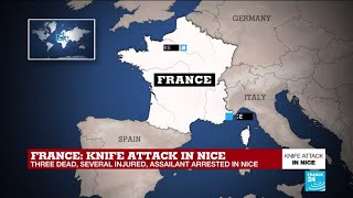 Analysis: French terror attacks appear linked, but not coordinated