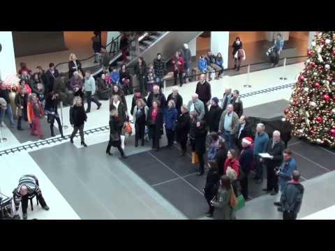 Flashmob Motettenchor Ingolstadt