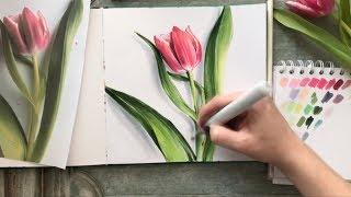 Скетч-Урок: Ботаническая иллюстрация маркерами. Тюльпан.