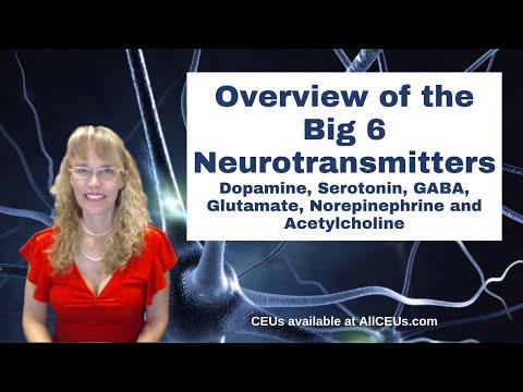 Neuropsychobiology: Dopamine, GABA, Serotonin and Acetylcholine