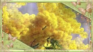 Футаж весенний - фон мимоза для фото и текста
