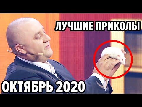 😆 Дизель Шоу 2020 - Самые Лучшие Приколы - Октябрь 2020 | ЮМОР ICTV