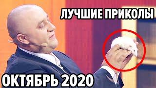 😆 Дизель Шоу 2020 - Самые Лучшие Приколы - Октябрь 2020   ЮМОР ICTV