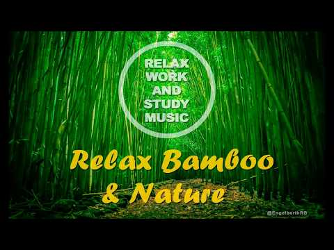 !!!Relax Bamboo and Nature!!! Music for work study Cafe Bar Restaurant stress sleep meditation